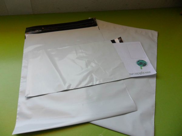 Courier Fly Envelopes