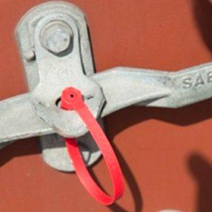 Self-locking Plastic Seal CAPRICORN 2